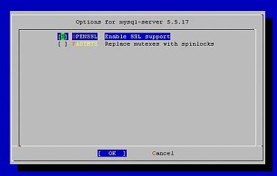 Mysql-server config