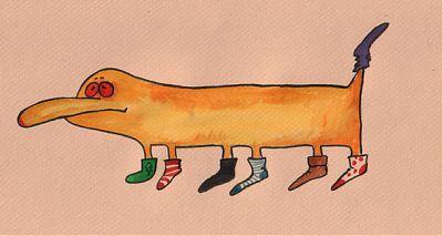 Непарный носкокрад