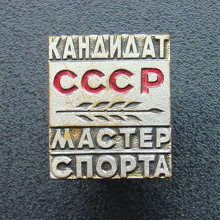 Кандидат в Мастера спорта СССР