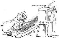 Телевизор - зло
